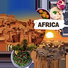 BSNI Africa